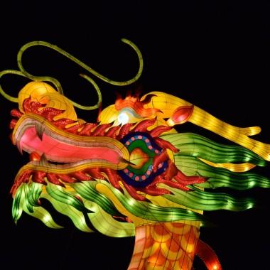 中国客户: 业务多元化